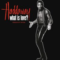 Haddaway - What Is Love? The Singles Of The 90s (Clear Vinyl)(LP)
